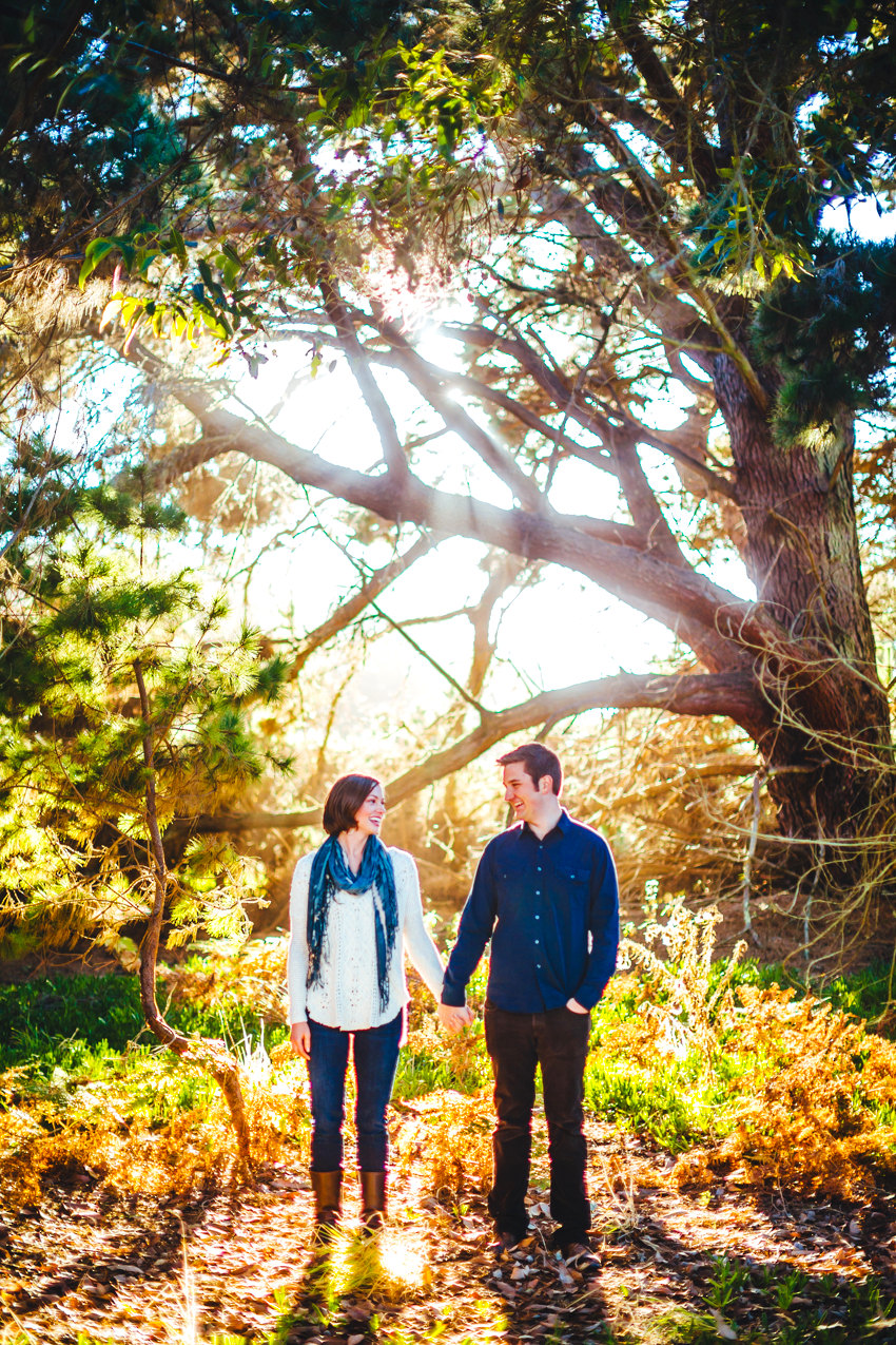 Point Reyes Engagement Session 010 photo