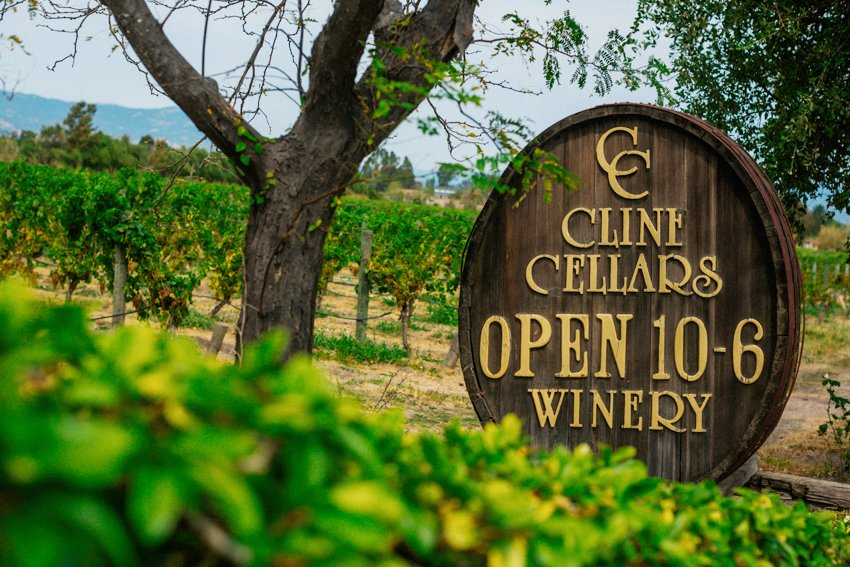 Cline Cellars Wedding 001 photo